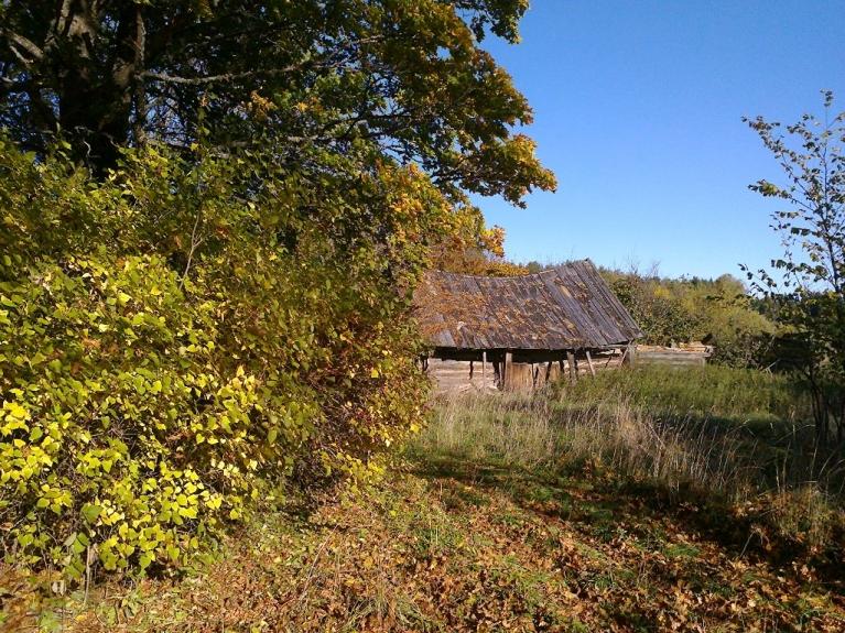 Autors: Emilis. Tipiskas rudens ainiņas no Rankas puses 1. un 2. oktobrī.
