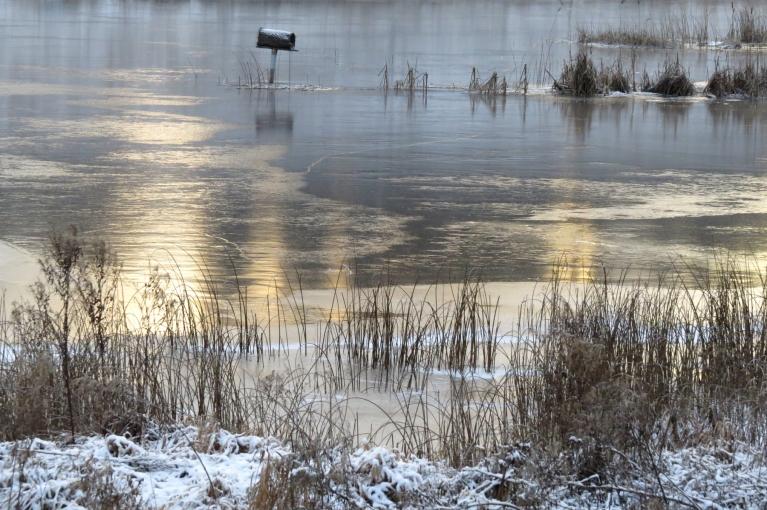 Ansīšu dīķi sāk pārklāties ar ledu.