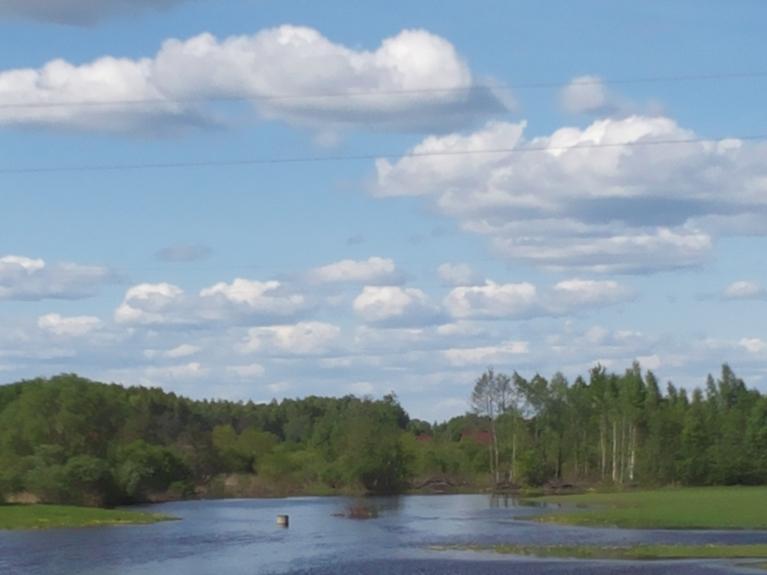 Pēc lietiem mazās upes kāpj ārā, šeit - Feimanka netālu no Preiļiem