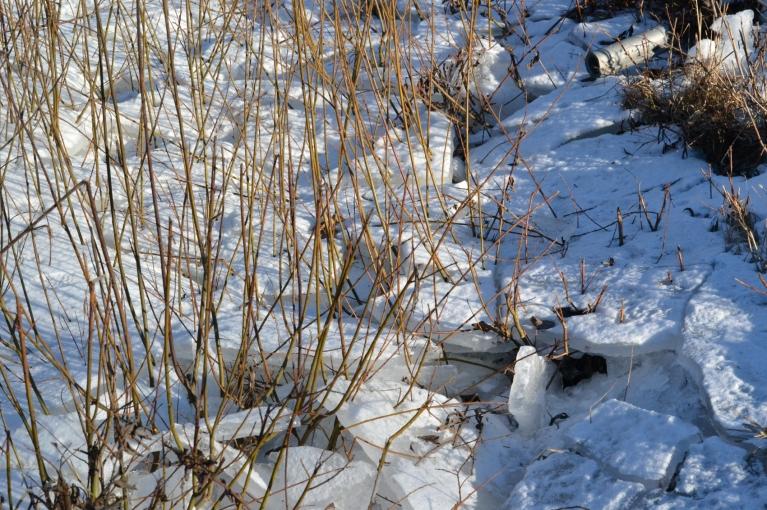 Biežo atkušņu dēļ ledus grāvjos februāra vidū ir izveidojies vairākos slāņos.