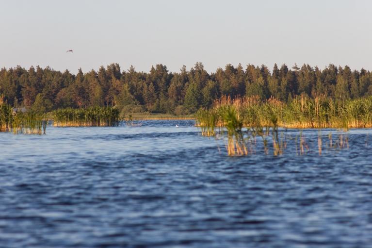 Skats no Lielrovas uz Engures ezera A krastu.