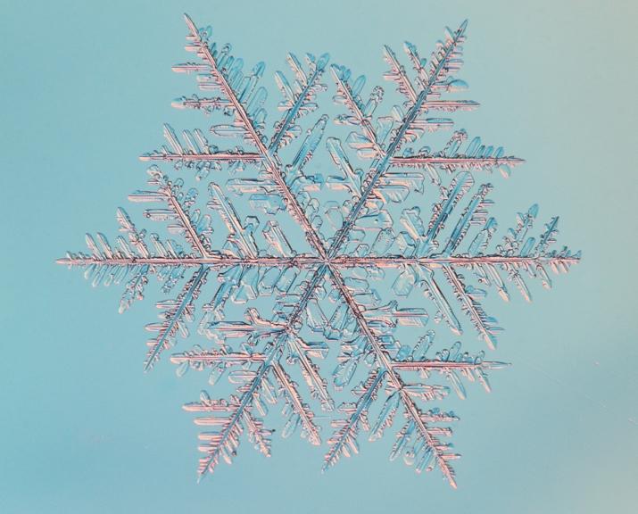 Iespaidīga sniegpārsliņa Rīgā, 21. decembrī
