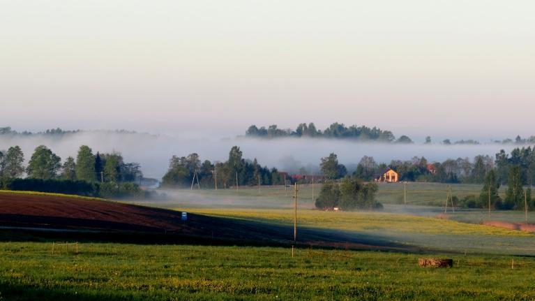 18. maijs, Allaži. No rīta skaista slāņu migla.