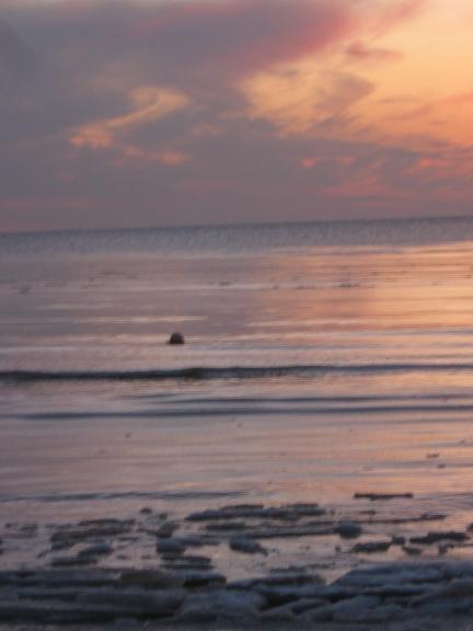 ši gada 12.Marts , Liepājas pludmale, ķerot kometu PANSTAR !!