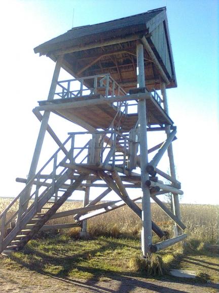 Putnu vērošanas tornis