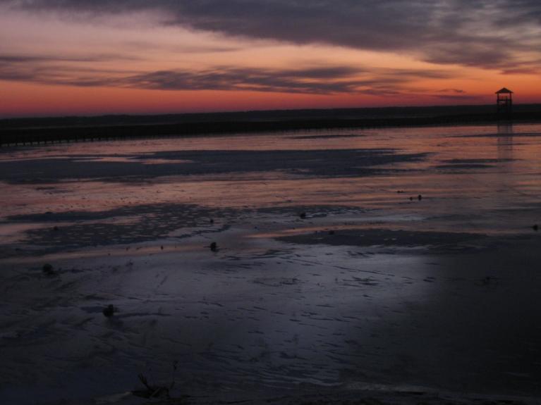Gaismas krāsas spēle uz ledus ezermalas pļavās..... Dabas māksla..