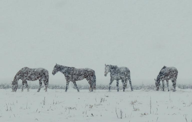 Pusdivos dienā snigšana atsākas.