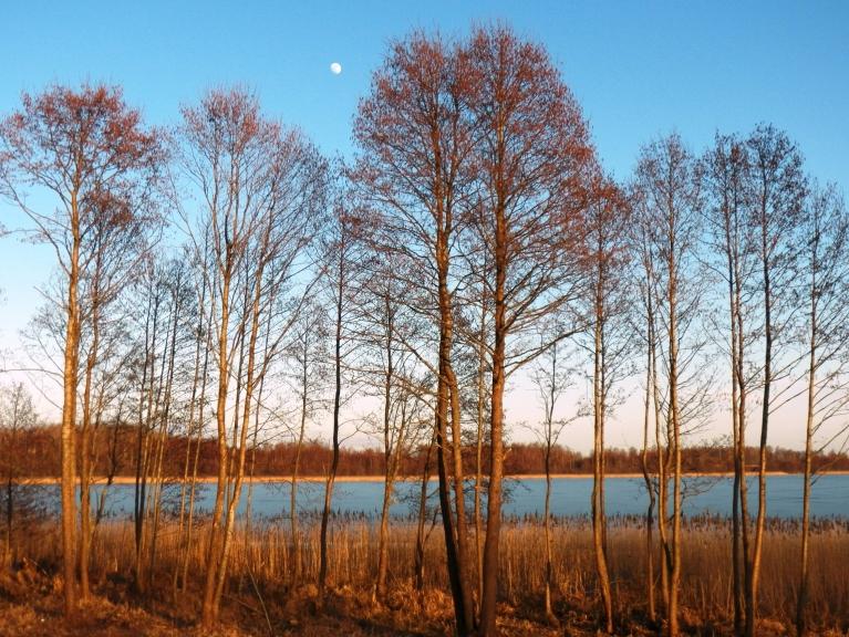 Virs Viļakas ezera briest pilnmēness.