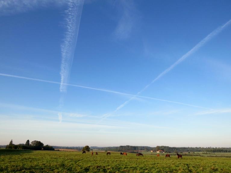 10. septembra rītā debesīs ilgi saglabājas lidmašinu izplūdes gāzu atstātās sliedes.