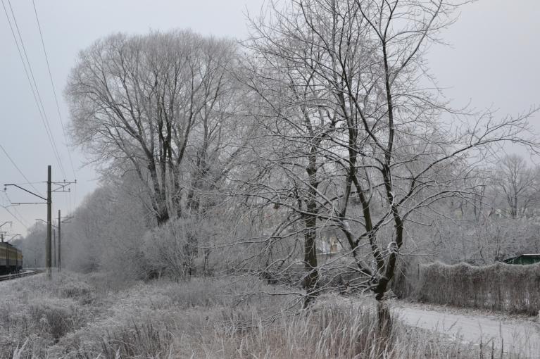 Zolitūdes stacija svētdienas rītā sagaida ar nedaudz sniegotu/sarmotu ainavu.