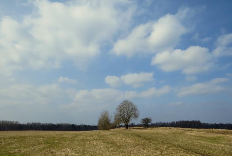 Toties tīrumi un pļavas jau atbrīvojušie no baltās krāsas.