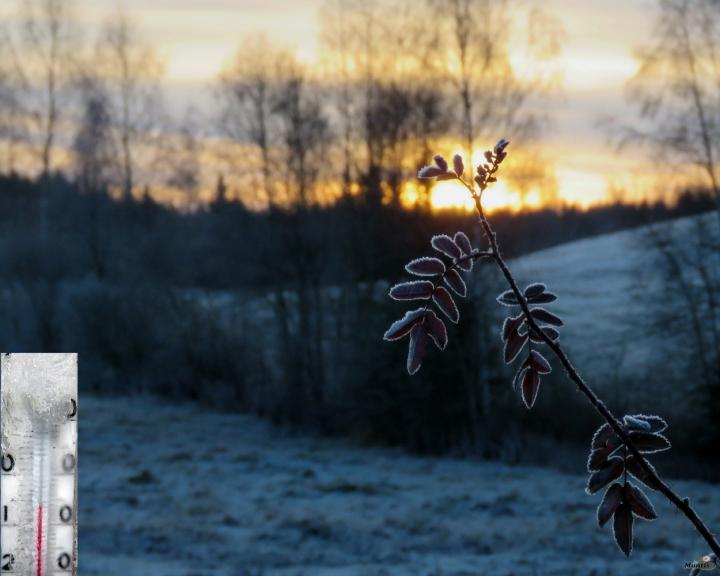 Svētdienas rīts jau īsti ziemīgs.
