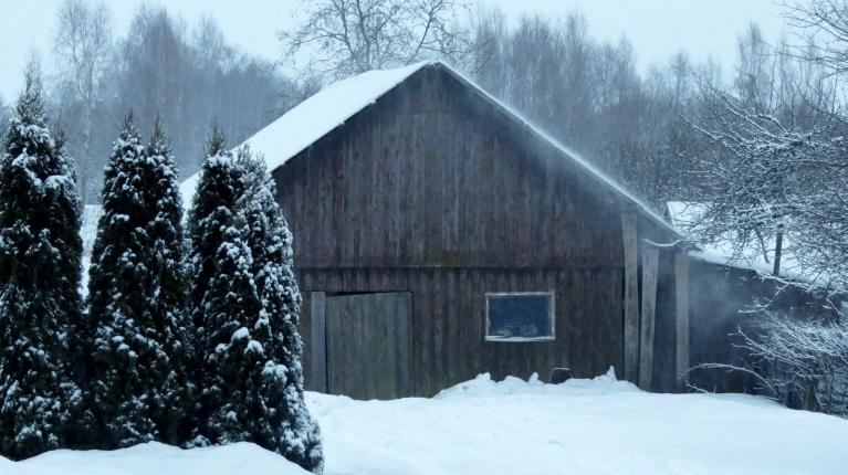 Kaut arī no jumtiem lielais sniegs vakar jau  nošļūcis, ar jauno sniedziņu piejumta putenītim ir pietiekami.