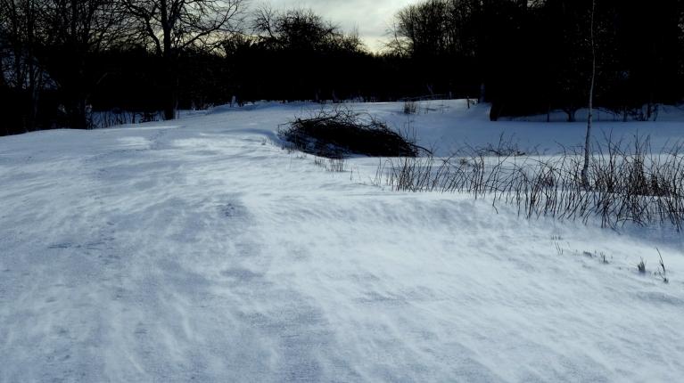 """Negantais vējš turpina sniega dzenāšanu un ātri """"aizvelk"""" ciet pēdas."""