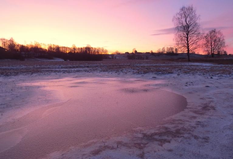 6. februāra rīts ar rozā padebesi.
