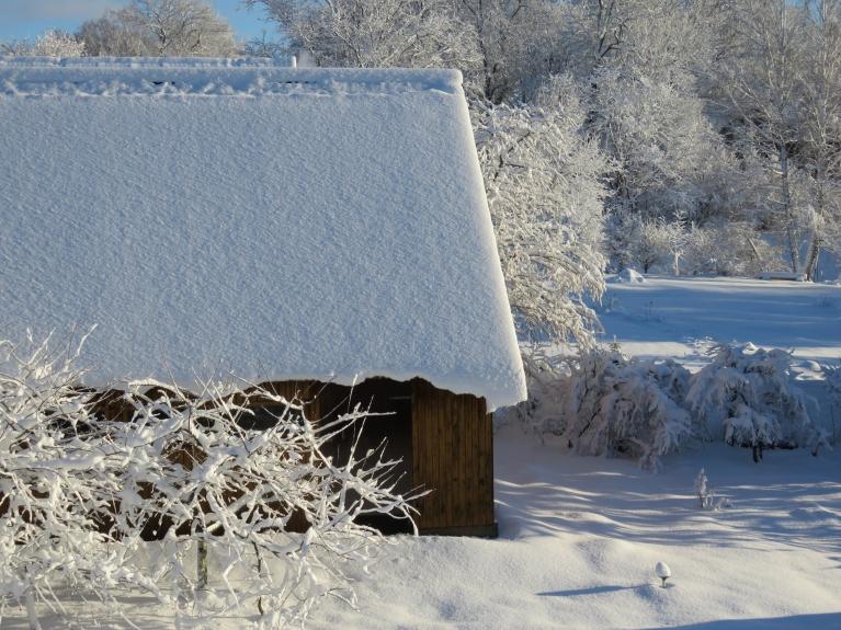 Sniega kārta veido jumta pārkares, no dažiem jumtiem tas ar lielu troksni nonāca lejā jau vakar, dažiem kaimiņiem jāsamierinās ar salauztām siltumnīcām.