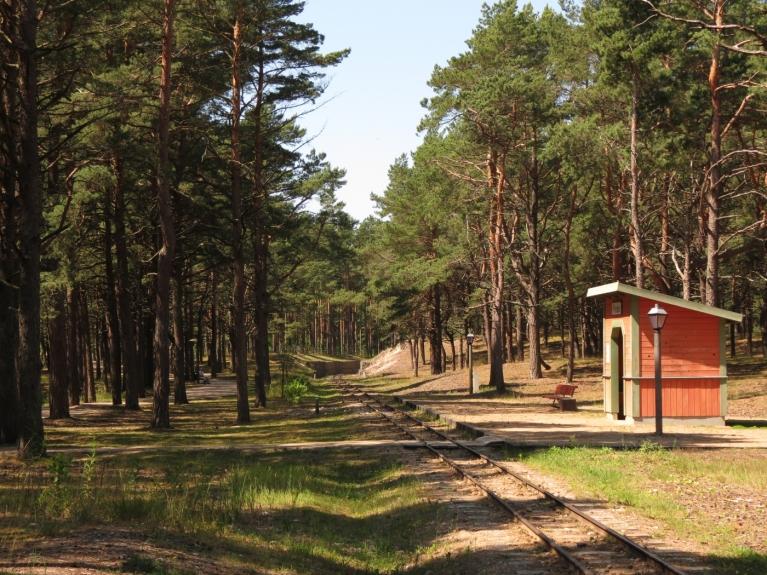Jūlijs - mežs kā patvērums no karstās saules
