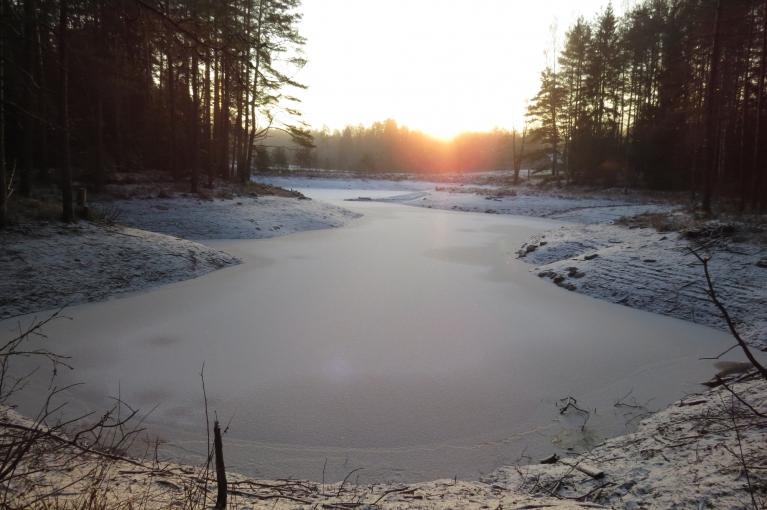 Linezeru klāj ledus kārtiņa, pagājušās nedēļas lietavas tā zūdošo ūdens līmeni nedaudz papildinājušas.