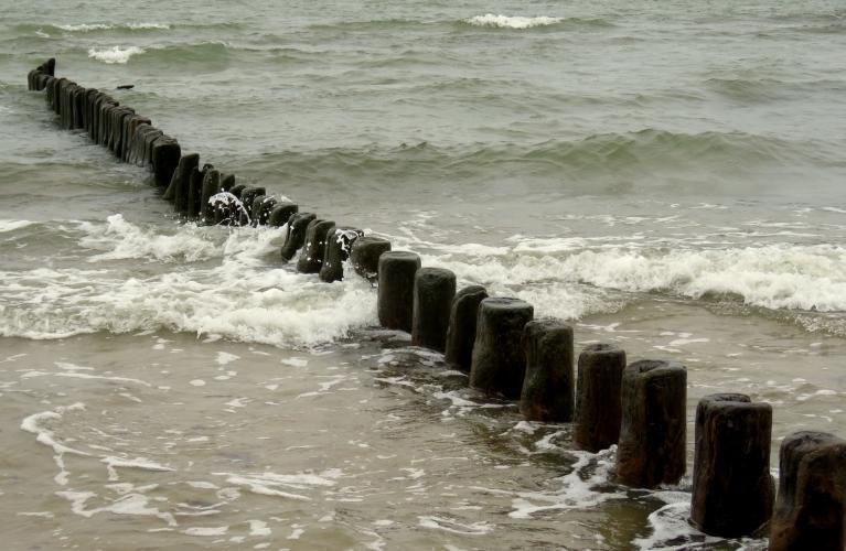 22. jūlijs - ziemeļu puses neliels vējelis uz krastu atpūtis siltu ūdeni.