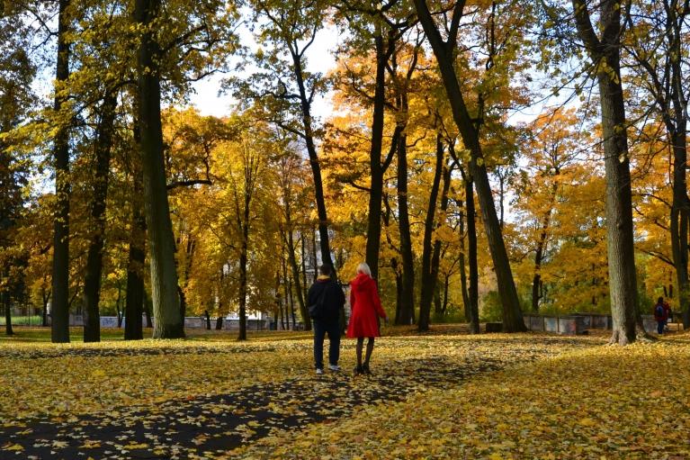 24. oktobra rītā nolemju veltīt jauko dienu zelta rudens baudīšanai. Sākumā apmeklēju Arkādijas parku.