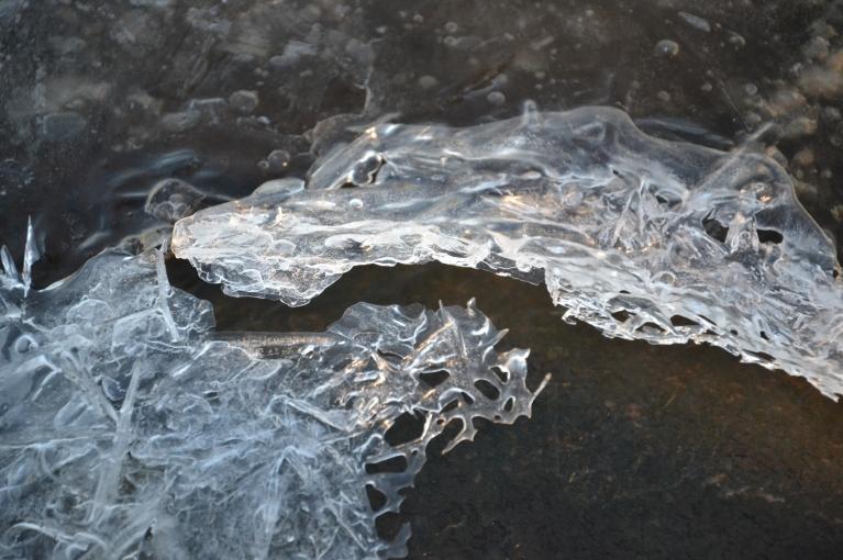 Saulainajā un vēsajā pēcpusdienā Daugavā ledus turpina veidoties, cīnoties ar jau pavasarīgās saules siltajiem glāstiem, veidojot interesantas formas.