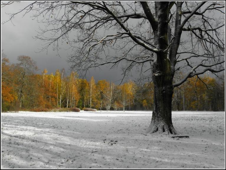 Pēc sniegputeņa Rīgā