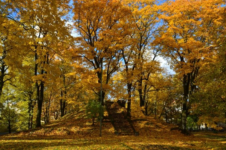 skati ir vēl skaistāki, zelta rudens visā krāšņumā.