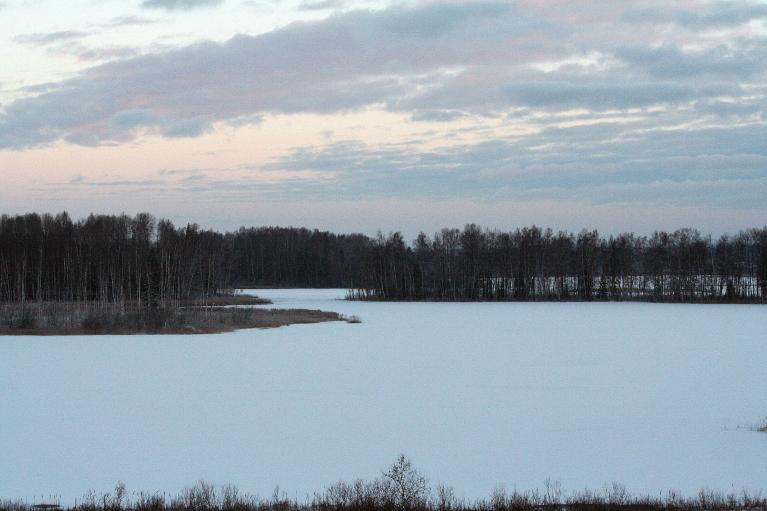 Autors: muntis. Zobols Jaungada naktī atkal pārvilcies ar ledu (Vecpiebalga)