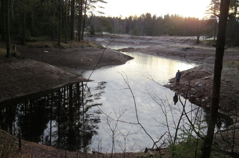 Linezerā lēnām un nemanāmi turpinās ūdens līmeņa pazemināšanās.