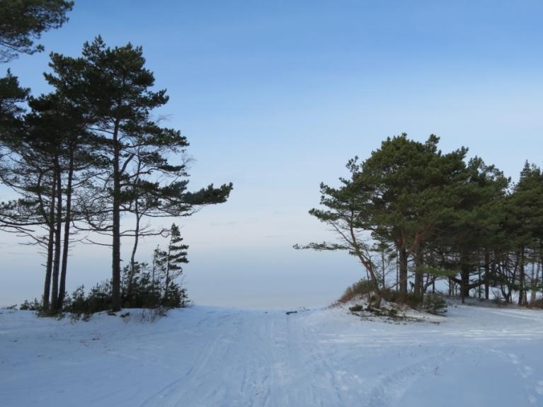 26.02. Izzūdošs ceļš, lejup priekšā Staldzenes stāvkrasts un miglainā jūra.