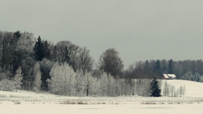 Rīts- iesākas ar jaunu svaiga sniega kārtiņu.