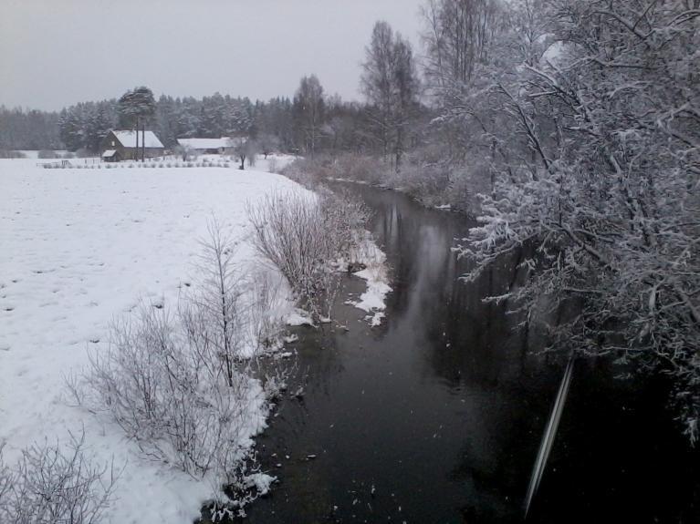 14. februāra rīts - Vaidava pie Alūksnes, uz zemes 5 cm sniega.