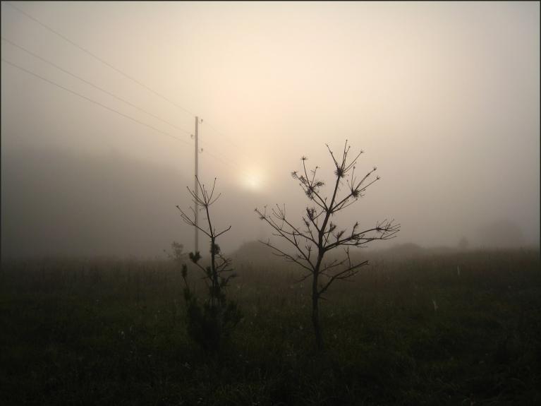 9.septembra rīts pamatīgā miglā.