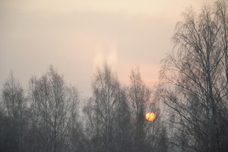 5. novembra rīts. Īsta veļu laika saulīte.