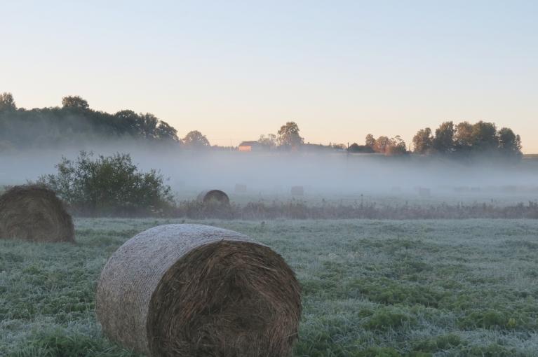7. septembra rīts - ielejas zemajās pļavās salnas.