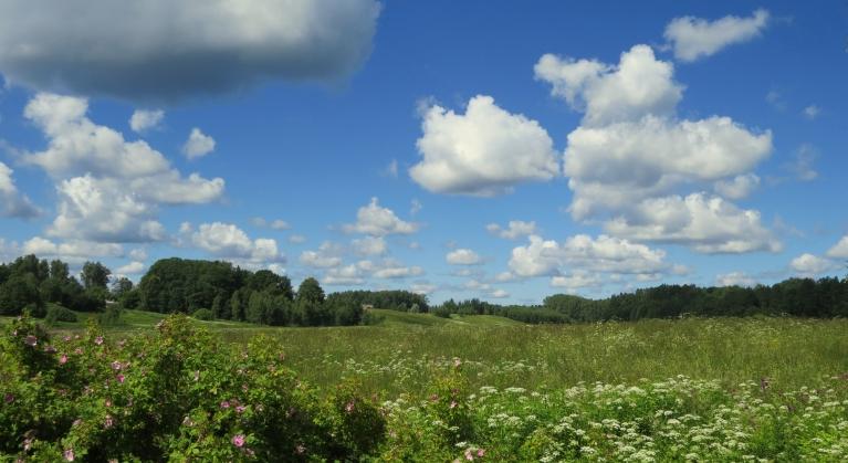 Svētdiena, 28. jūnijs, pusdienlaikā +20,1, debesīs klejo simpātiski laba laika mākonīši.