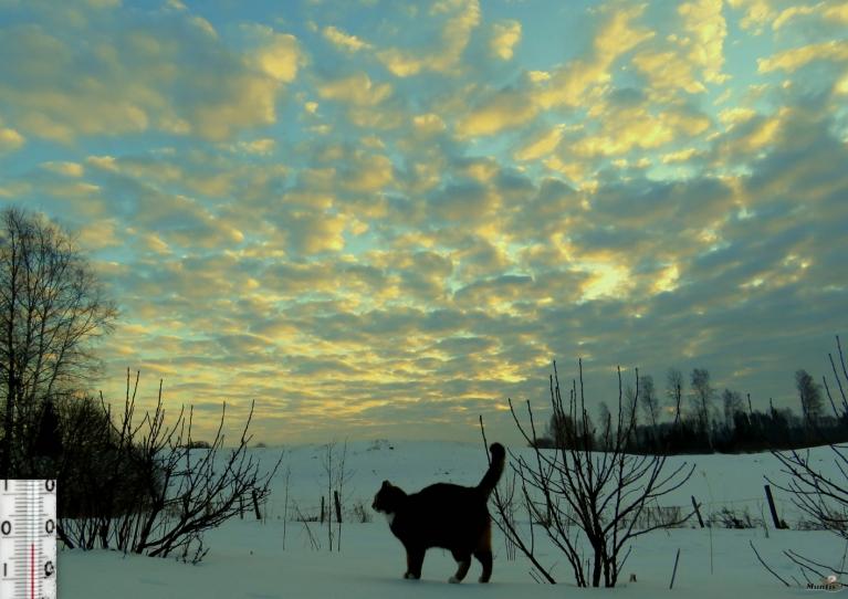 12. marta rīts - tur aiz mākoņiem ir saule.