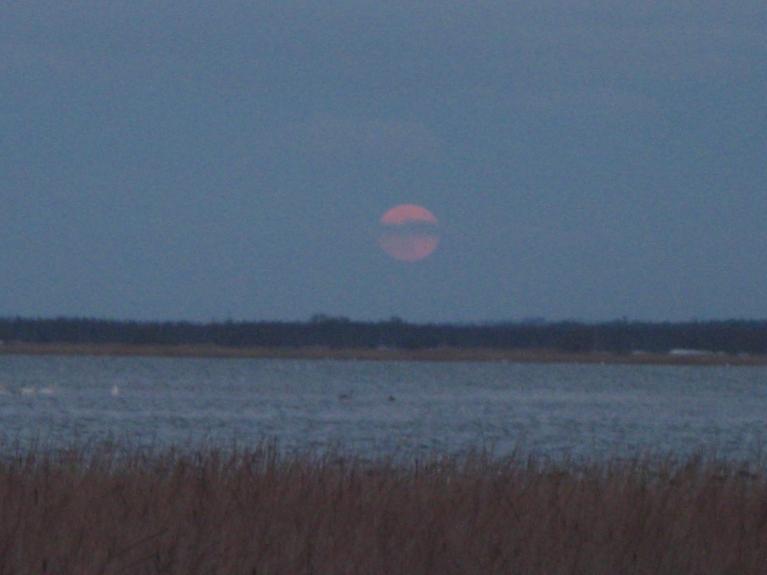 Pilnmēness apogejas uznāciens virs ezera!!