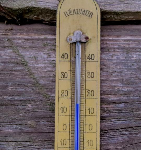 Foto: Migla. Latvijas vasara - gaisa temperatūra ēnā grozās ap +17 grādiem.  (14.07.)