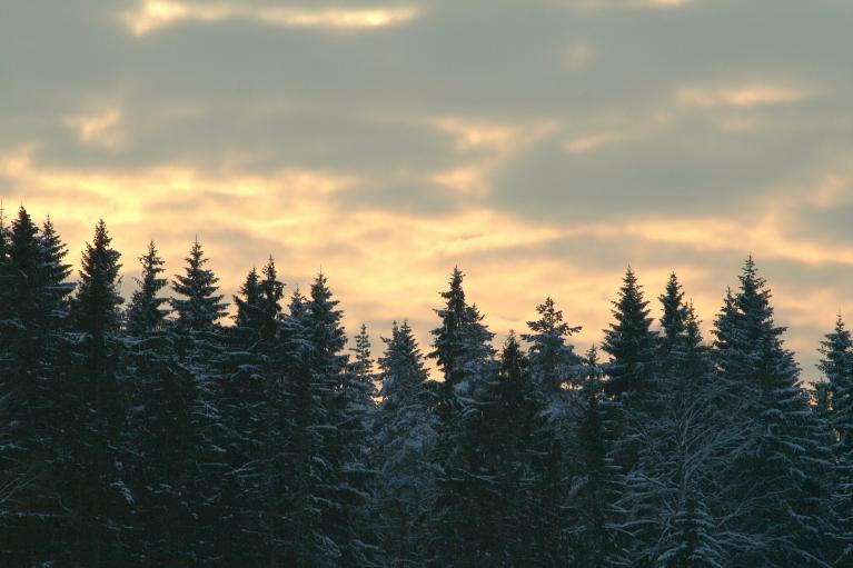 Autors: muntis. Nejaukie mākoņi arī pie manis.. 12.01.2013. Vecpiebalga.