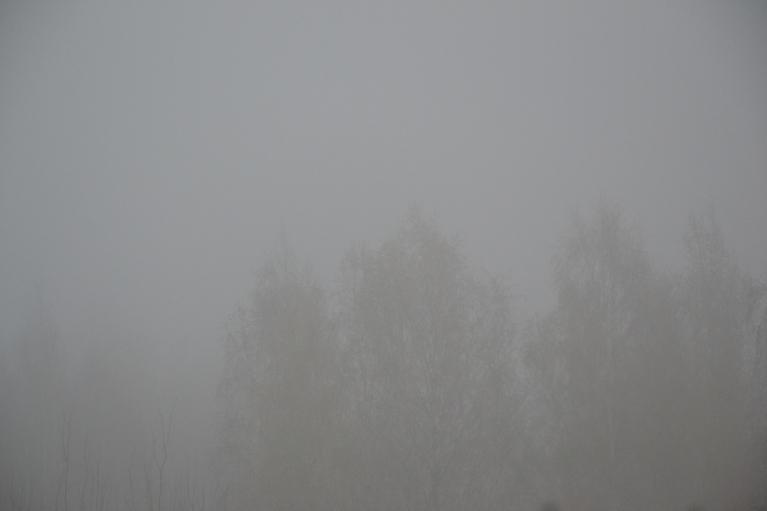 30. oktobrī pēc rīta lietus sabiezē migla.