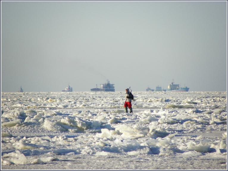 Līcis aizsala pilnībā. Kūģi ir iespruduši,toties ledus makšķerniekiem ir kur izversties...
