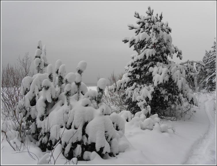 Autors: gubumākonis. Jūrmala sniega varā 19.12.