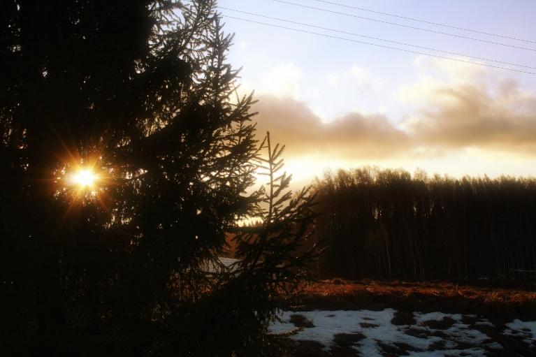 Zemā ziemas saule, ir gandrīz pusdienlaiks.