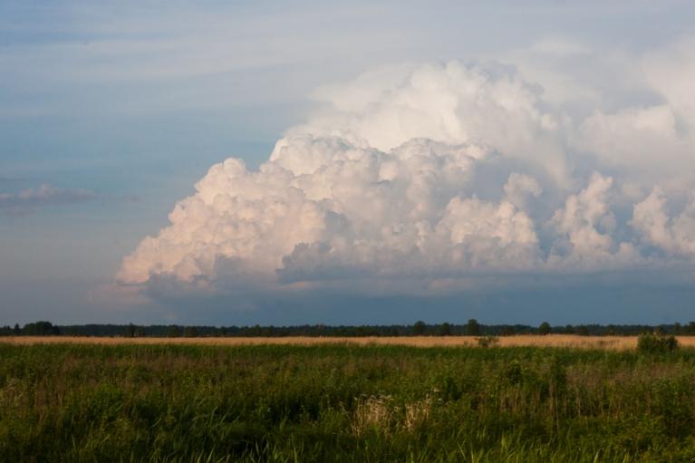 Negaisa mākonis Liepājas ezera D daļā. 5. jūnijs