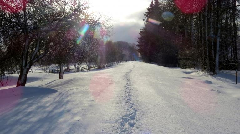 Ceļš nosnidzis balts.