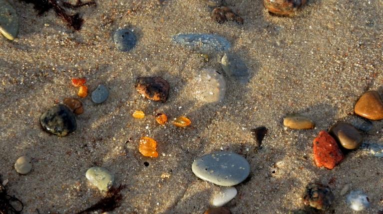 Nemierīgā jūra izmetusi arī pa kādai dzintara kripatiņai.