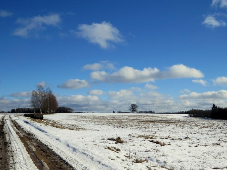 """Dienā zilas debesis ar baltām mākoņu """"aitiņām""""."""