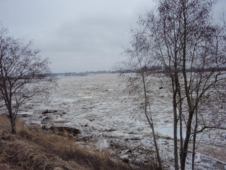 Autors: saulcerīte. Lielupe uz Bauskas novada robežas. (14.04.)