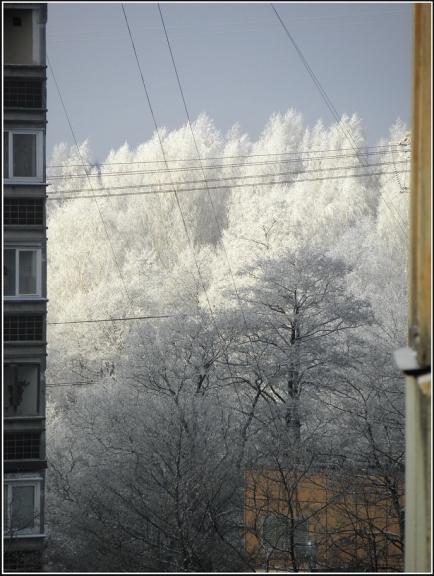 Decembrī ziema cīnās ar rudeni, tomēr pārliecinošu uzvaru negūst un mēneša liela daļa paiet visai rudenīgi...